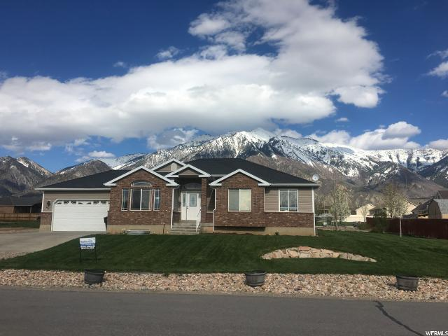 557 S 100 W, Mona, UT 84645 (#1595351) :: Big Key Real Estate