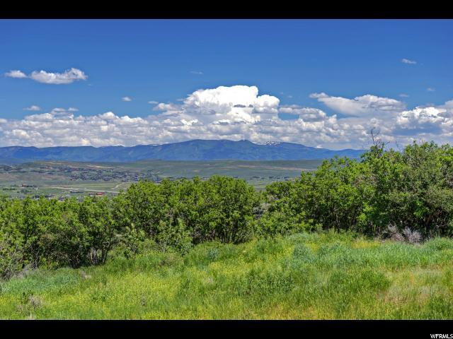 1170 Snow Berry St, Park City, UT 84098 (#1598362) :: The Canovo Group