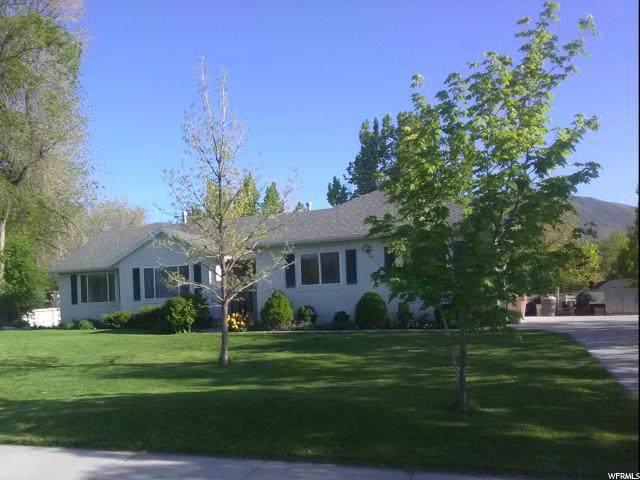 552 E Stokes Ave, Draper, UT 84020 (#1600033) :: Keller Williams Legacy
