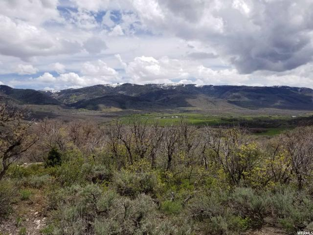 463 N Valley View Drive Dr E, Indianola, UT 84629 (#1604908) :: Action Team Realty