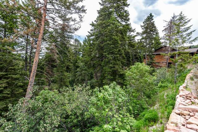 475 Parkview Dr, Park City, UT 84098 (#1612286) :: The Perry Group