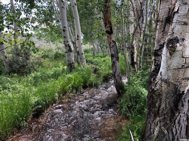 151 Aspen Dr, Pine Cliff, UT 84017 (MLS #1619596) :: High Country Properties