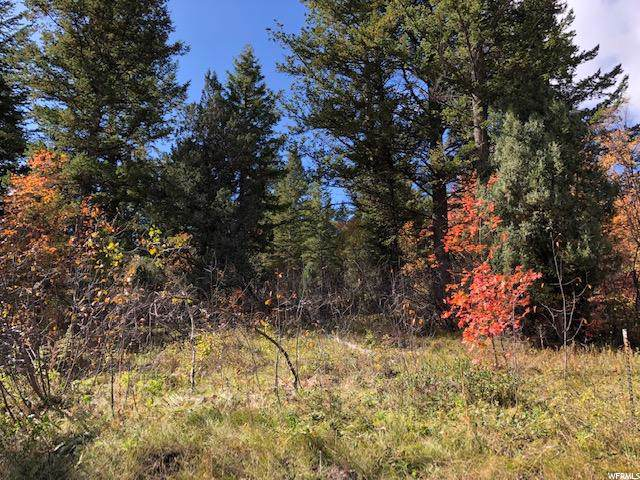 0 Lot 434 Porcupine Pass, Lava Hot Springs, ID 83246 (#1621690) :: Colemere Realty Associates