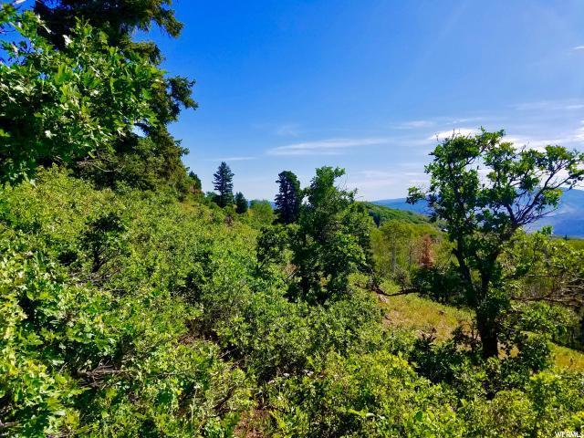2745 S Valley View Rd, Wanship, UT 84017 (MLS #1622616) :: High Country Properties