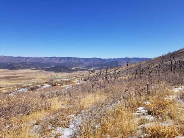 27 W Indian Ridge Dr S, Fairview, UT 84629 (#1639696) :: Red Sign Team