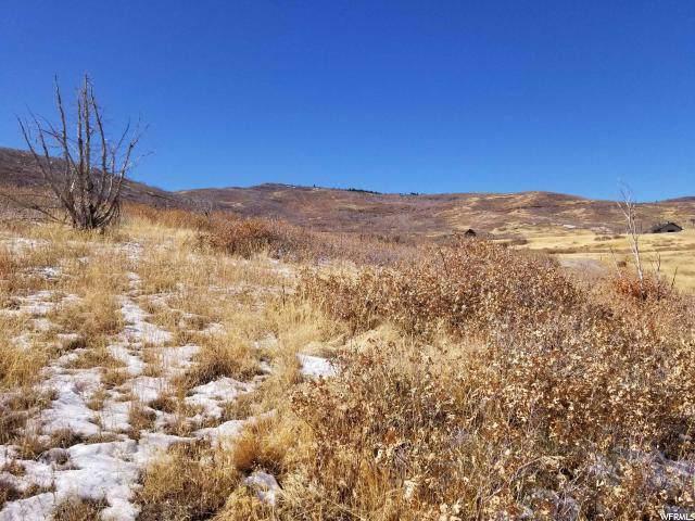 28 W Indian Ridge Dr S, Fairview, UT 84629 (#1639698) :: Red Sign Team
