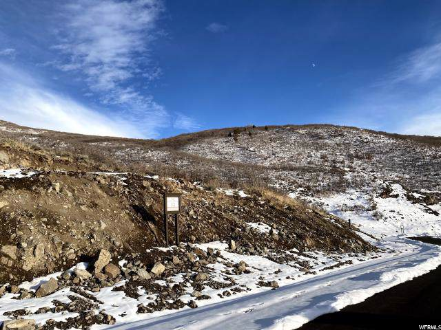 11582 N Fox Hollow Ct, Kamas, UT 84036 (MLS #1645615) :: High Country Properties
