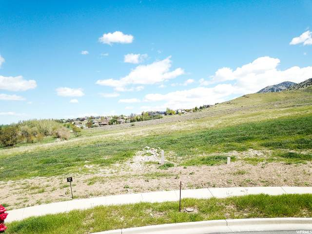 621 E 525 N, Providence, UT 84332 (MLS #1648240) :: Lookout Real Estate Group