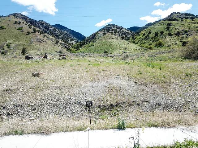138 N 850 E, Providence, UT 84332 (MLS #1648383) :: Lookout Real Estate Group