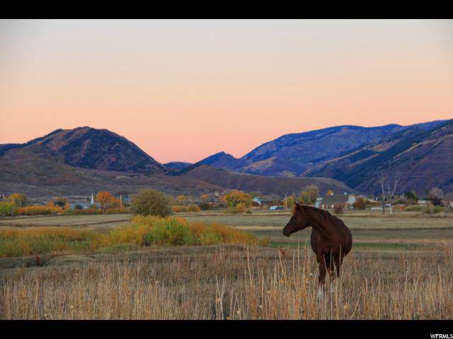 1967 W State Road 32, Peoa, UT 84061 (#1649181) :: Colemere Realty Associates