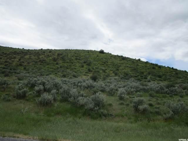 4200 Pocatello Valley Rd - Photo 1