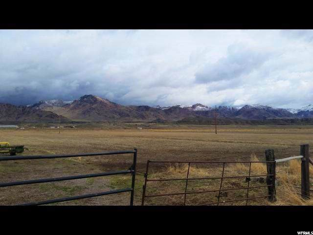 175 S Highway 125, Leamington, UT 84638 (#1652804) :: Colemere Realty Associates