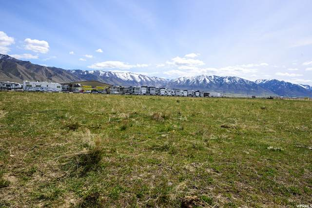 286 E Cimmarron Way, Erda, UT 84074 (#1652996) :: The Fields Team