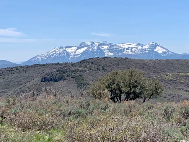 1671 Westward Ho Rd, Kamas, UT 84036 (MLS #1654939) :: High Country Properties