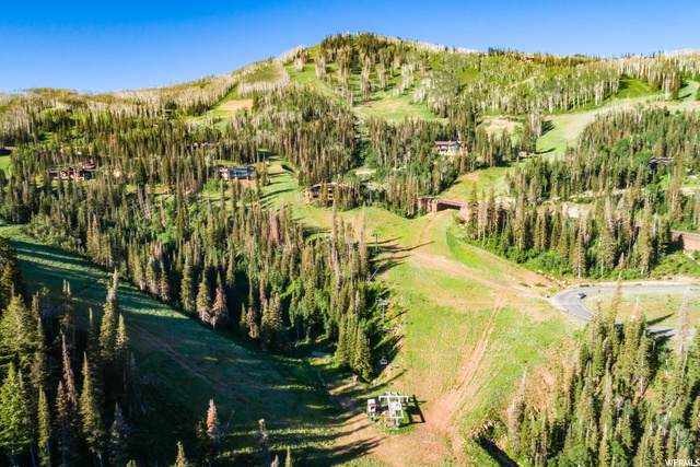 159 White Pine Canyon Rd, Park City, UT 84098 (#1655053) :: Colemere Realty Associates