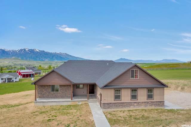 595 E 8900 S, Paradise, UT 84328 (#1656670) :: Big Key Real Estate