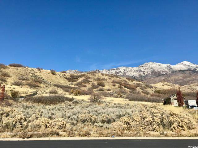 415 E East View Ln, Alpine, UT 84004 (#1657130) :: goBE Realty