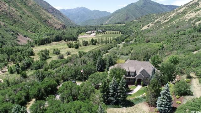 238 S Hobble Creek Canyon Rd E #1, Springville, UT 84663 (#1669246) :: Big Key Real Estate