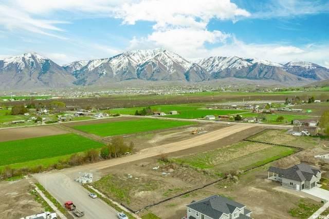 1378 E 550 S, Payson, UT 84651 (#1670010) :: Bustos Real Estate | Keller Williams Utah Realtors