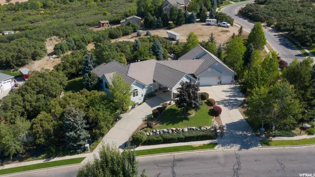 1443 Box Elder Dr, Alpine, UT 84004 (#1674421) :: Doxey Real Estate Group