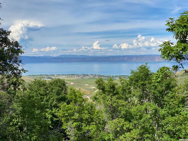 1397 S Mahogany Dr, Garden City, UT 84028 (MLS #1675189) :: Lookout Real Estate Group