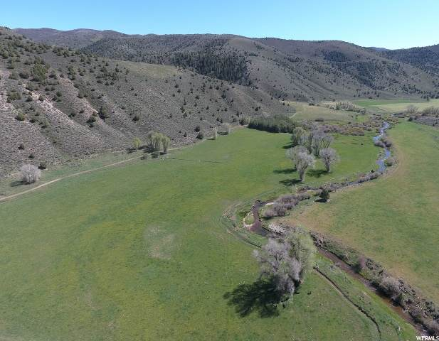 6080 N Lost Creek Rd, Croydon, UT 84018 (#1676811) :: Colemere Realty Associates