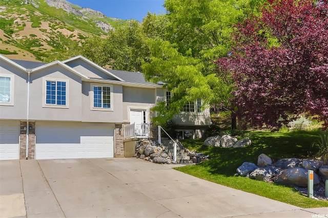 1648 N 50 E, Springville, UT 84663 (#1677691) :: Utah Best Real Estate Team | Century 21 Everest