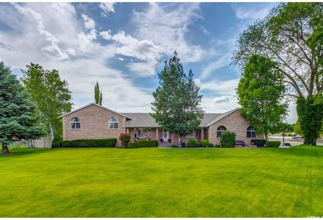10383 N 6800 W, Highland, UT 84003 (#1679486) :: Big Key Real Estate