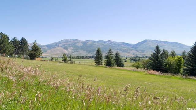 2760 N Ogden Canyon Rd, Liberty, UT 84310 (#1685461) :: REALTY ONE GROUP ARETE