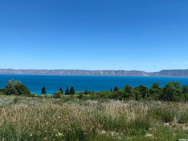 227 Fremont Rd, Fish Haven, ID 83287 (#1686336) :: Colemere Realty Associates