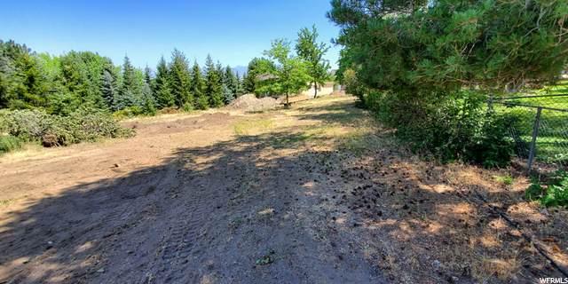 194 N Clark E, Elk Ridge, UT 84651 (#1689034) :: Colemere Realty Associates
