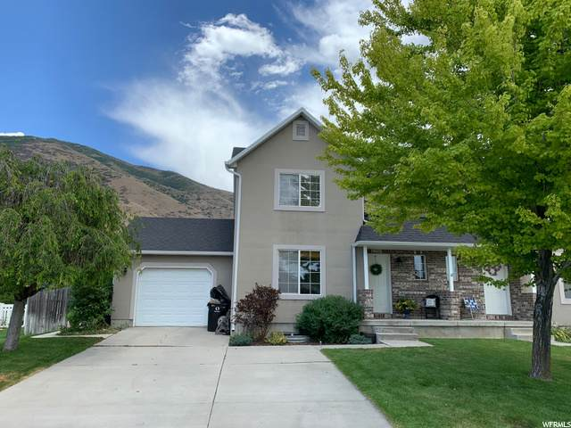 254 N 525 E, Springville, UT 84663 (#1690404) :: Red Sign Team