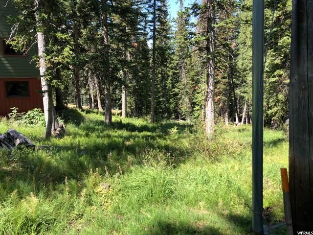 8443 Snake Creek Rd - Photo 1