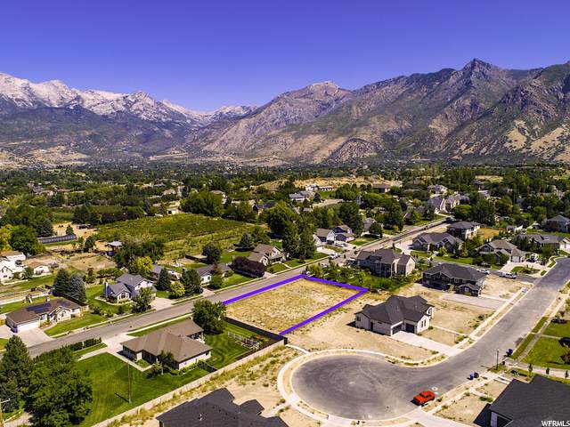 257 W Sunset Dr, Alpine, UT 84004 (#1699878) :: Livingstone Brokers