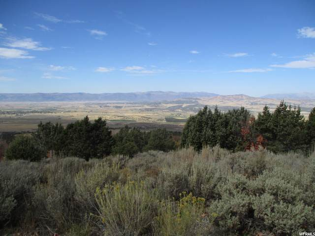 20000 N 13450 E, Mount Pleasant, UT 84647 (#1702782) :: Gurr Real Estate