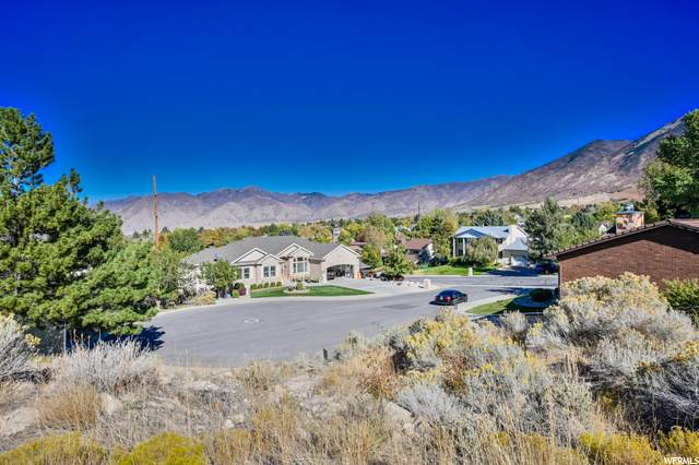 316 E Sage Cir E, Tooele, UT 84074 (#1707271) :: Doxey Real Estate Group