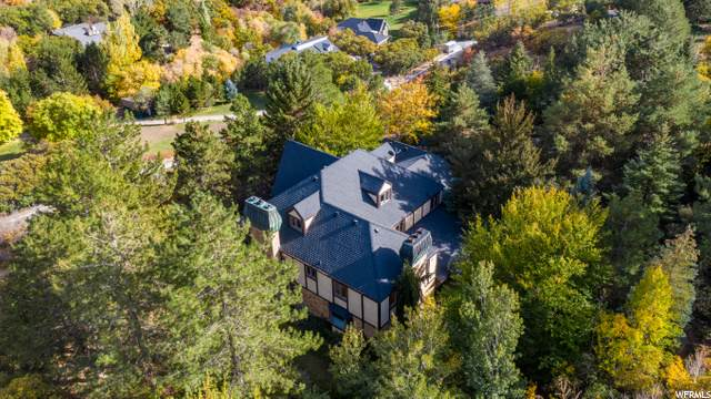 1241 N Fort Canyon Rd, Alpine, UT 84004 (MLS #1709192) :: Jeremy Back Real Estate Team