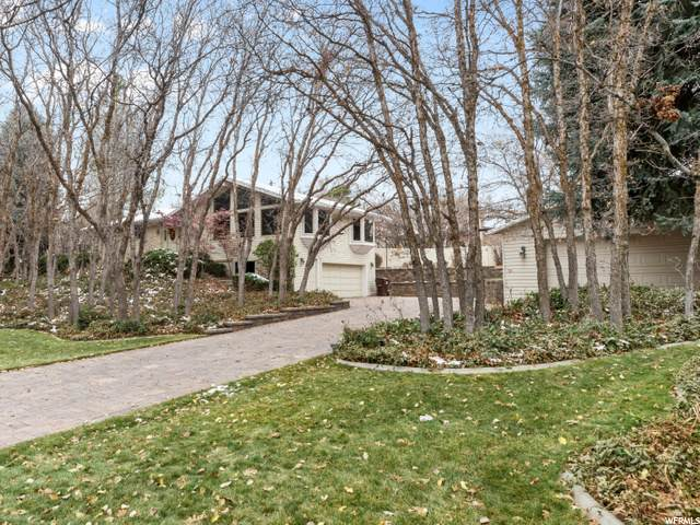 346 S Scenic Way, Alpine, UT 84004 (MLS #1712804) :: Jeremy Back Real Estate Team