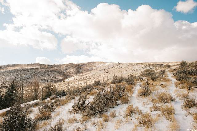 Address Not Published, Coalville, UT 84017 (MLS #1716555) :: High Country Properties