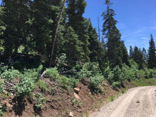 11 Pine Ridge, Mount Pleasant, UT 84647 (#1148731) :: Colemere Realty Associates
