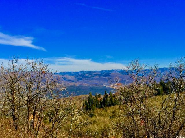 2484 S Forest Meadow Rd, Wanship, UT 84017 (#1414990) :: Big Key Real Estate