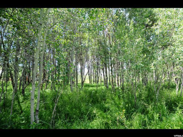 9911 Deer Creek Dr, Heber City, UT 84032 (MLS #1464806) :: High Country Properties