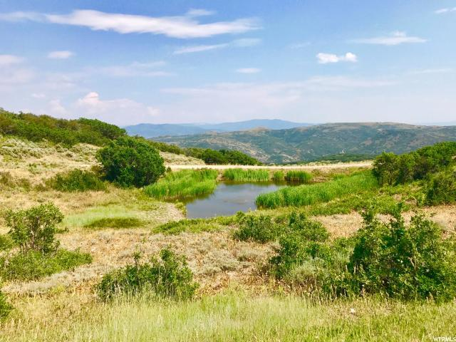145 S Forest Meadow Rd, Wanship, UT 84017 (MLS #1470747) :: High Country Properties