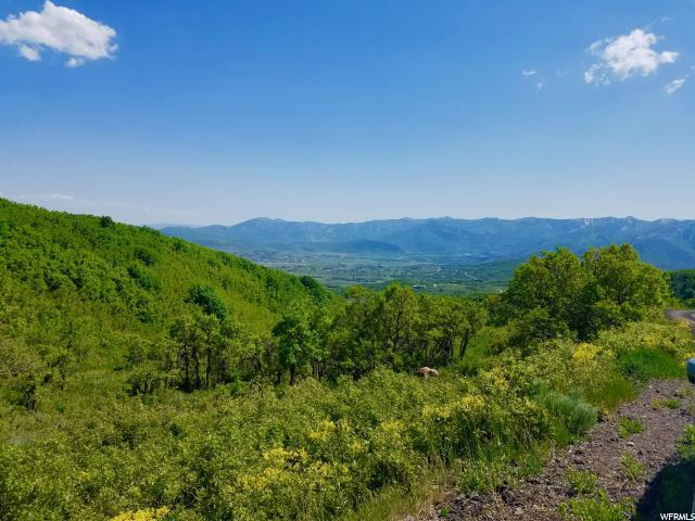 1947 E Lower Cove Road, Park City, UT 84098 (MLS #1507977) :: High Country Properties