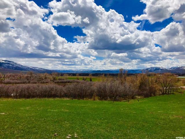 965 E Weber Canyon Road Rd, Oakley, UT 84055 (MLS #1528408) :: High Country Properties
