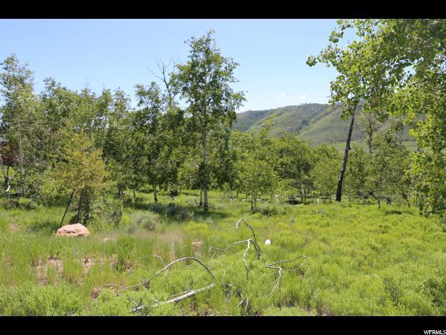 94 N Mountain Ridge Cir, Scofield, UT 84526 (#1594151) :: Exit Realty Success