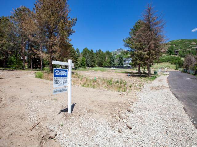 10253 Dimple Dell Rd - Photo 1