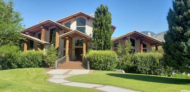 102 S Aspen Dr, Mapleton, UT 84664 (#1665150) :: Big Key Real Estate