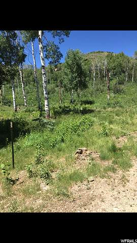 45 Moose Hollow Rd, Oakley, UT 84055 (MLS #1666031) :: High Country Properties