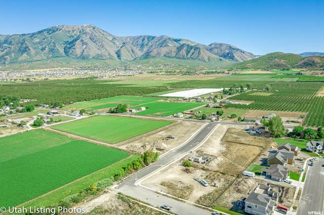 574 S 1400 E, Payson, UT 84651 (MLS #1670009) :: Lookout Real Estate Group